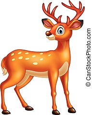 Cartoon deer isolated on white background - Vector...