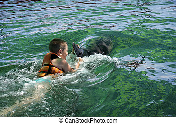 Boy swimming with dolphin rear view - Boy swimming with...