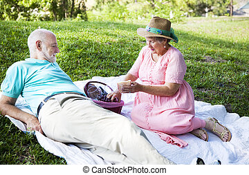 Picnic Time - Senior couple enjoys a romantic picnic in the...