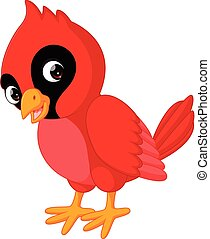 Cartoon beautiful cardinal bird - illustration of Cartoon...