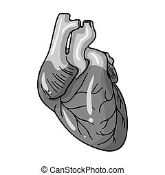 Human heart icon in monochrome style isolated on white...