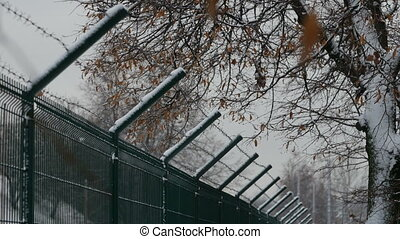 barbed wire fence in winter