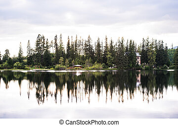 Lake and coniferous trees, National park Vysoke Tatry,...