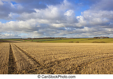 yorkshire wolds vista - a scenic farming landscape in the...