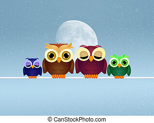 owls family on wire