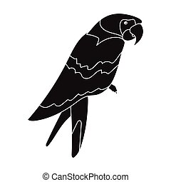 Pirate's parrot icon in black style isolated on white...