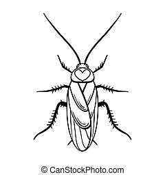 Cockroach icon in outline style isolated on white...