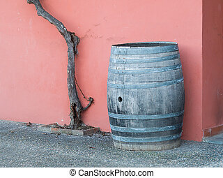 Old wooden barrel, grapevine trunk and pink wall  in background