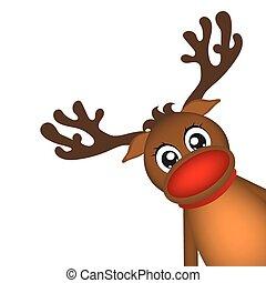 Reindeer peeking sideways on a white background vector