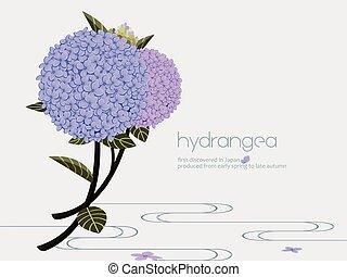 Elegant purple hydrangea flower on the water.