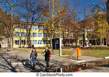 beautiful sunny school's day - school building at sunny...