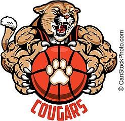 cougars basketball - muscular cougars basketball mascot...