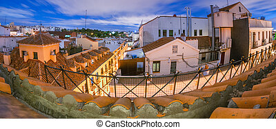 Long exposure - Madrid rooftops in the evening. - Super wide...