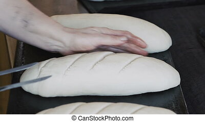 Preparing dough for baking breads.