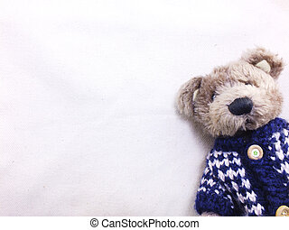 teddy bear with copy space background