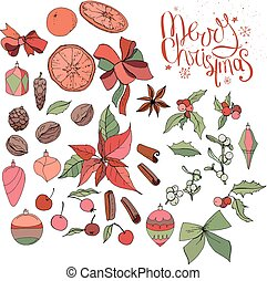 Set with isolated Christmas objects - flowers, spice,fruits...