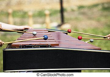 xilofone, Marimba, xilofone, percussão, música, mãos,...