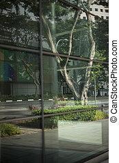Window og modern transperent building skyscrapers,...