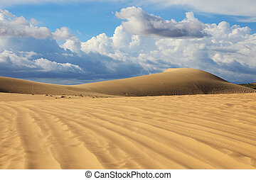 Sand dunes in Mui Ne, Vietnam - White sand dunes on the...
