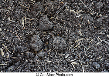Peat soil texture background - Soil is a mixture of...