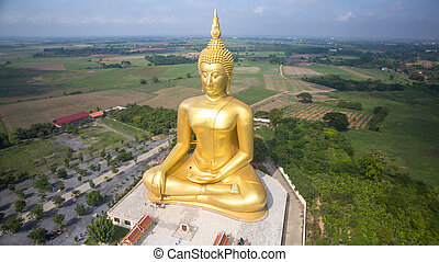 Aerial view of Big Buddha statue in Wat Muang,thailand