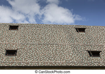 Historic tiled roof with blue sky