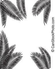 Palm Leaf Vector Illustration - Palm Leaf on Black...