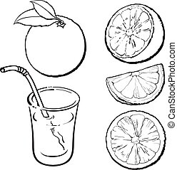 Oranges and a glass of freshly squeezed juice, vector sketch...