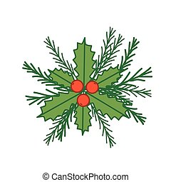 Holly and spruce branches illustration