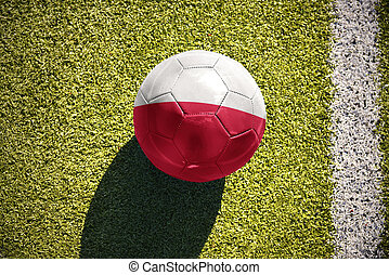 football ball with the national flag of poland lies on the...
