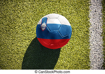 football ball with the national flag of slovenia lies on the...