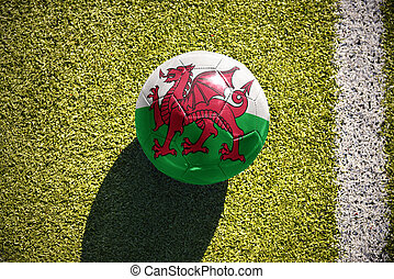 football ball with the national flag of wales lies on the...