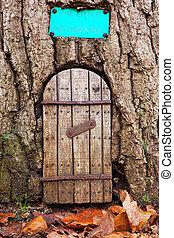 Fairy door 2 - Fairy door in a tree trunk with autumn leaves...