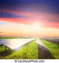 Solar panels on green field under sunset sky