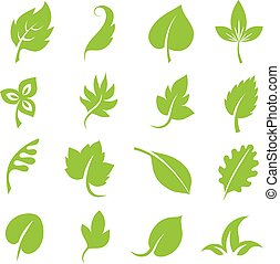 Leaf icon set. Fresh green leaves various shapes isolated on white background