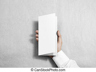 Hand holding blank white flyer brochure booklet in the hand....
