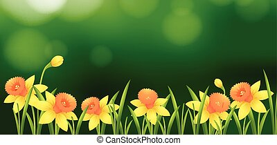 Background design with yellow flowers in garden