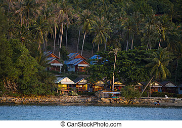 Tropical bungalow and palm tree on Koh Phangan island during...