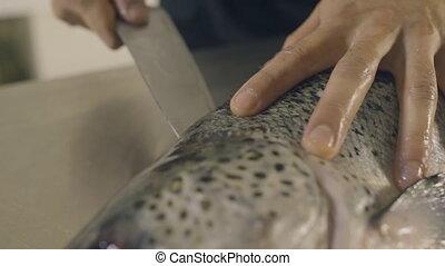 Chef preparing a fresh fish on a cutting board, slow motion...