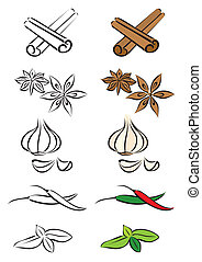 Various spices vector illustration