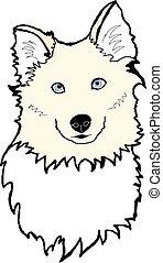 Laika - Yakutian laika dog