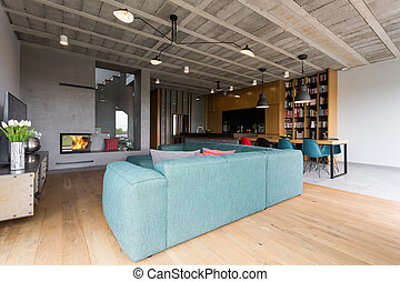 Contemporary room in modern house