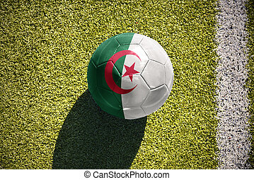 football ball with the national flag of algeria lies on the...