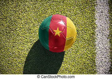 football ball with the national flag of cameroon lies on the...