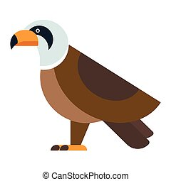 Eagle raptor wildlife bird vector. - Eagle bird, brown hawk...