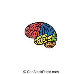 Isolated abstract colorful brain logo. Human cerebral...