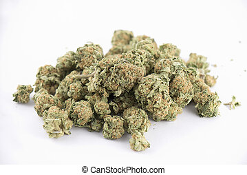 Detail of cannabis buds (mango puff strain) isolated on...