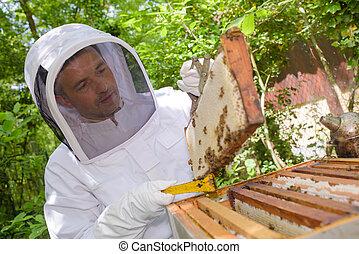full of honey