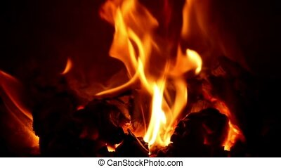 Burning fire in a home fireplace Closeup footage