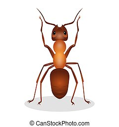 Realistic ant with two legs raised up hooked clows isolated...